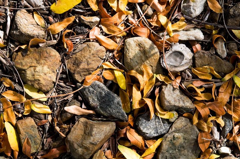 sticks-and-stones-photo-2054