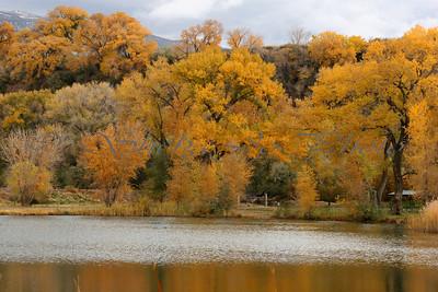 Fall Colors 2004. at River Bend Park, Palisade, Colorado...by Colorado River.
