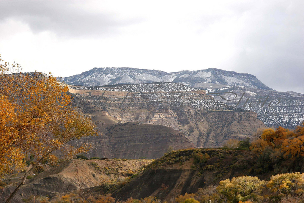 Fall Colors 2004. at Palisade Park, Colorado