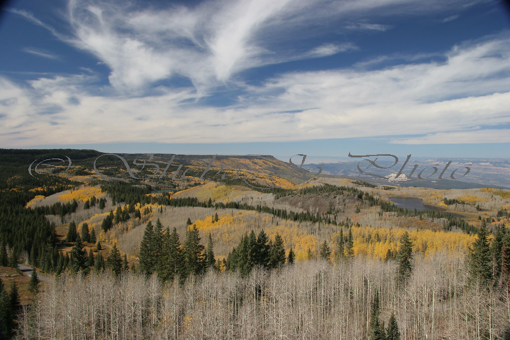 Fall colors, almost gone, on Grand Mesa...Colorado. A week before this shot, the aspens were in full color, now most are bare. Grand Mesa is the largest flat top mountain in the world. The flat top in amost the center of this pic is the Lands End Visitor Center. Also close to the doppler radar site.
