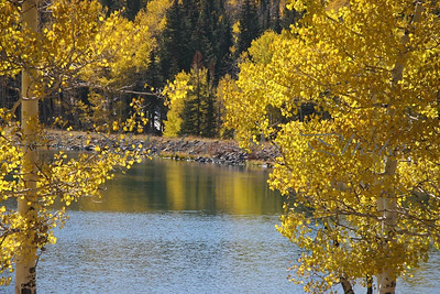 Aspens at Mesa Lakes.