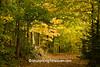 Autumn Road Scene, Richland County, Wisconsin