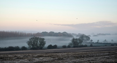 Gamlingay mist and frost