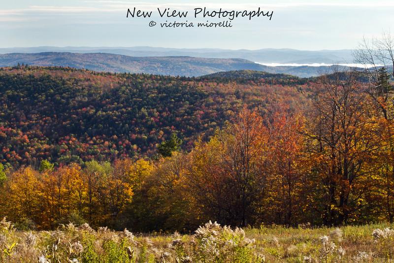 The Green Mountains ablaze durning the Autumn season.
