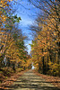 Autumn Road Scene, Vernon County, Wisconsin