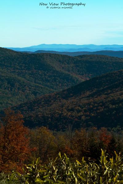 Autumn in  full splendor in Vermont.