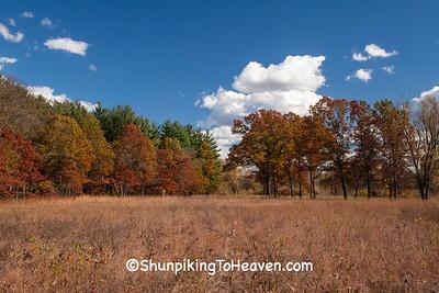 Shack Prairie, Leopold Memorial Reserve, Sauk County, Wisconsin