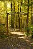 Nature's Doorway, Green County, Wisconsin