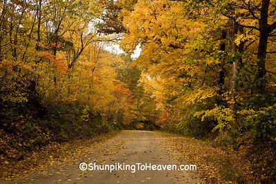 Autumn Road Scene, Richland County, Wisconsin