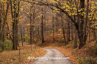 Autumn Road Scene, Sauk County, Wisconsin