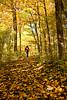 Hiker in Autumn Woods, Sheboygan County, Wisconsin