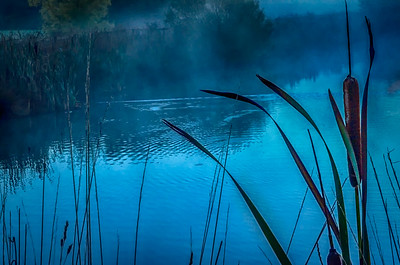 Blue Dawn at Lake