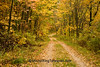 Autumn Road Scene, Sauk County, Wisconsin