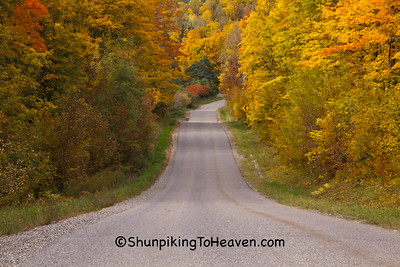 Fall Color Road Scene, Forest County, Wisconsin
