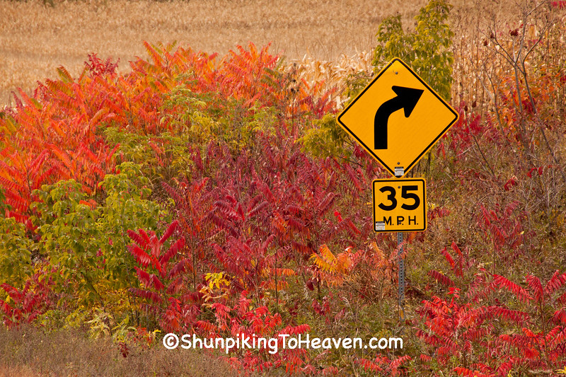 Autumn Colors, Buffalo County, Wisconsin