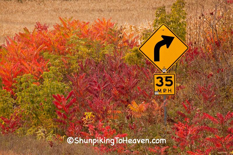 Autumn Colors, Buffalo County, Wisconsin