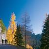 Foresta autunnale su strada al Lussari con 2 corridori 231012-242764 RED v150