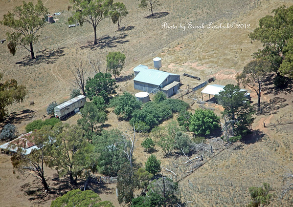 Photo kindly donated by Sarah Lovelock and taken in the Binalong area.