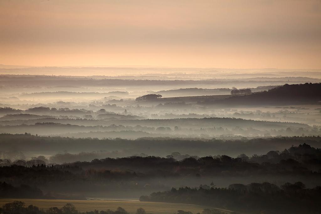 Wiltshire Dawn II