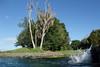 Braemar Springs