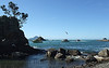 Boats returning over the Whakatane Bar from the Tuna Tournament, February 2010
