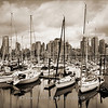 False Creek Harbour 2