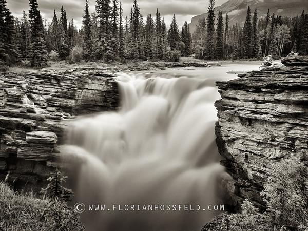 Athabaska Falls - Jasper (color version available)