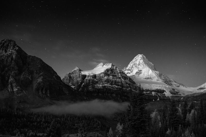 Early Morning Light on Mount Assiniboine