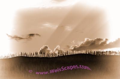 Setting sun thru the burnt out tree line, west shore of Lake MacDonald, Glacier National Park.