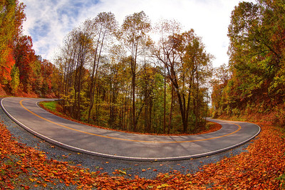 A switchback curve along the the Back of the Dragon that runs 32 miles between Marion, Virginia and Tazewell. The road is attracting visitors on Harley's and BMWs and Corvettes who want to drive the banked reverse curves, switchbacks, and mountain grades that make this such a challenging road.