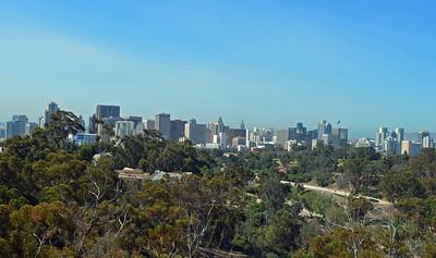 San Diego Skyline from Tower