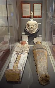 Mummies Display