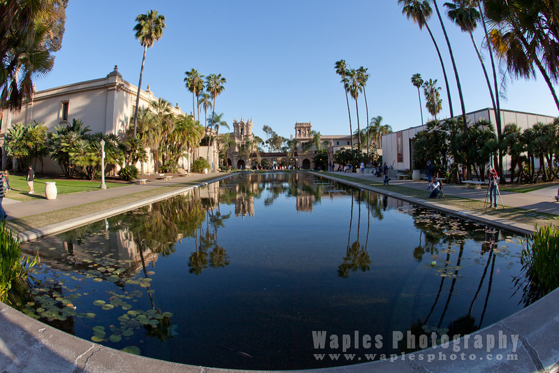 Balboa Park Reflecting Pool, South View