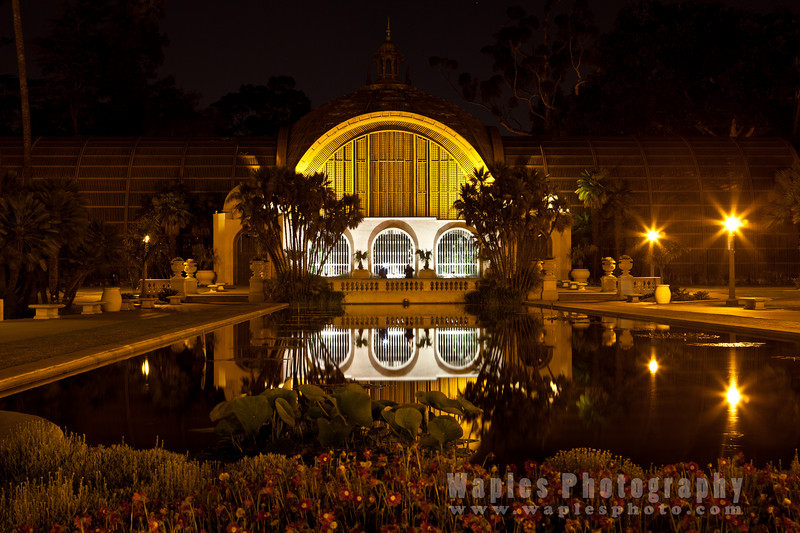 The Botanical Building at Night