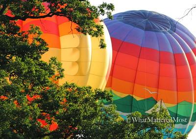 balloon2IMG_7529