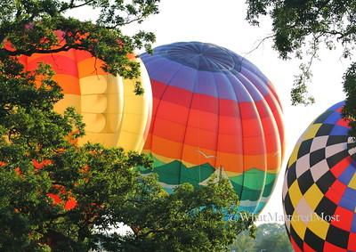balloonIMG_7529