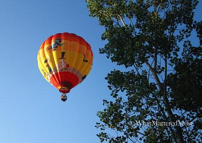 balloon2IMG_7495