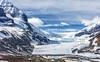 18.  Athabasca Glacier