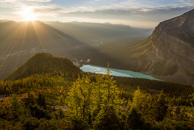 First light on the Fall Festival - Lake Louise is unbelievably colourful right now. I love Fall! Stay tuned for a lot more spectacular images from my sunrise hike on Mt. St. Piran.