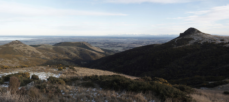 Canterbury Plains III