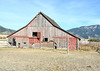 The Merrill barn in Swan Valley, Idaho. A working barn with cattle.  Taken June 2012.