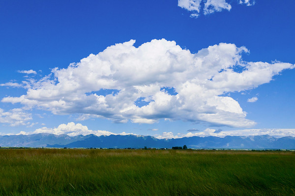 Barns and Farms in the Flathead Valley, MT