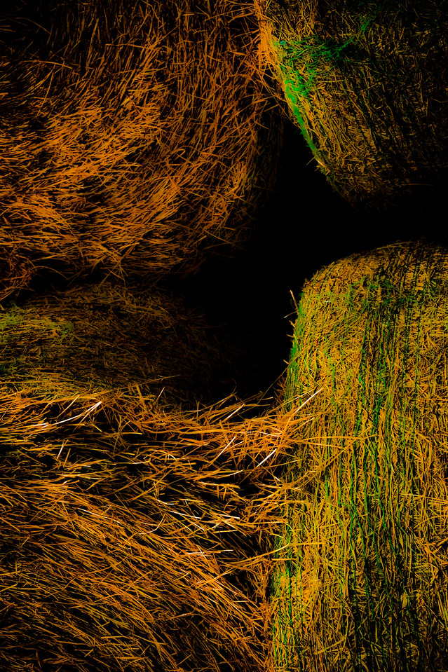 THE COLORS OF HAY