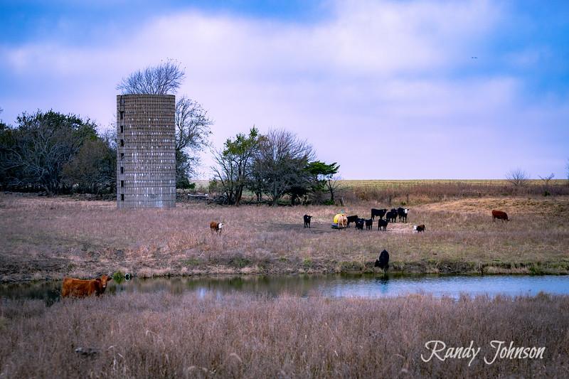 Barns more barns-5