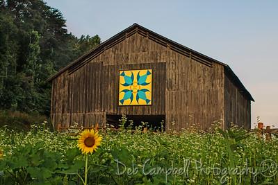 Quilt Barn #1 Seven Islands State Birding Park Kodak, Tennessee