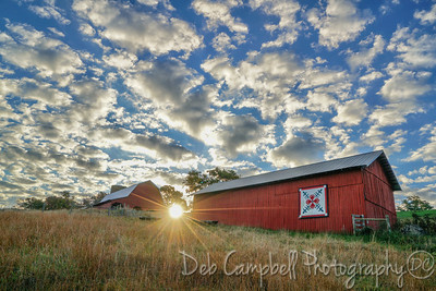 Red Barns at Daybreak