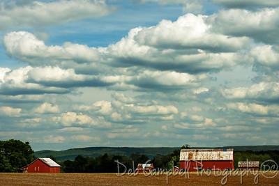 Red Barn Farm David Crockett Highway Near Winchester, Tennessee