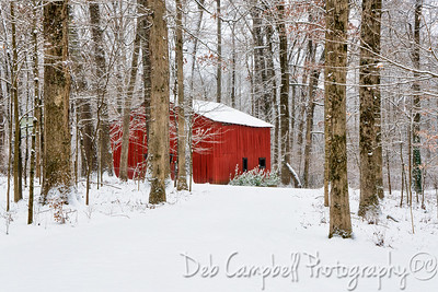 Little Red Barn in the Woods