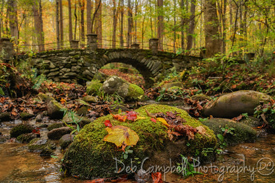 The Elkmont Troll Bridge