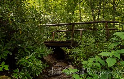 Alum Cave Foot Bridge